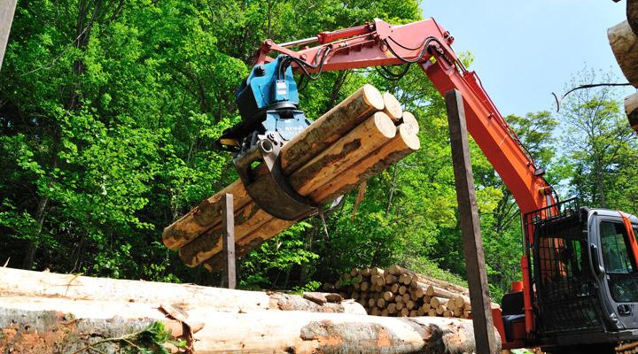 stacking fresh logs