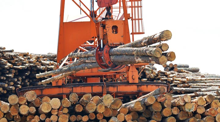logging claw grasping tree logs in mill